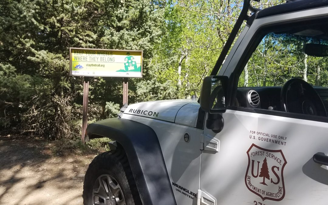 6/10/2019-6/16/2019 Stay The Trail Weekly Recap